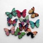 Пуговка бабочка
